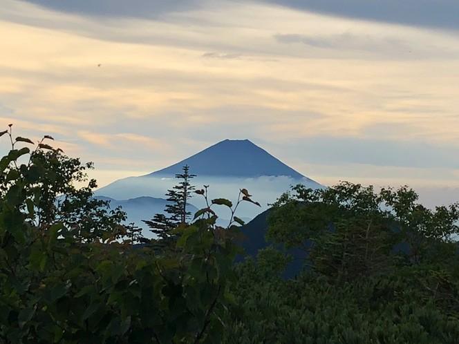雲海から富士山が