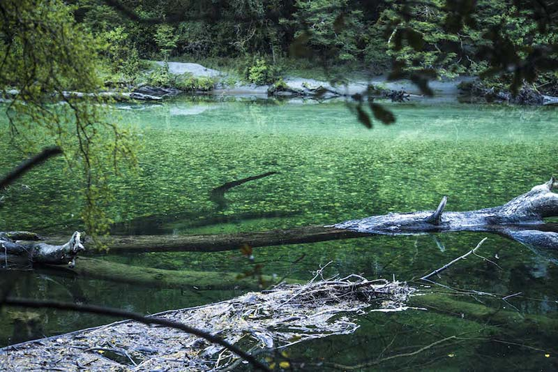 エメラルドグリーンの川があったり