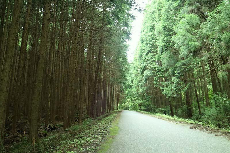 舗装路。この地区は城里町に合併する前は「七会村(ななかいむら)」という村でした。
