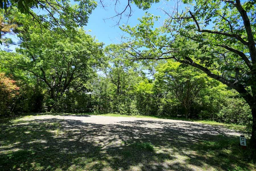木々で仕切られたキャンプサイトはプライベート感がある