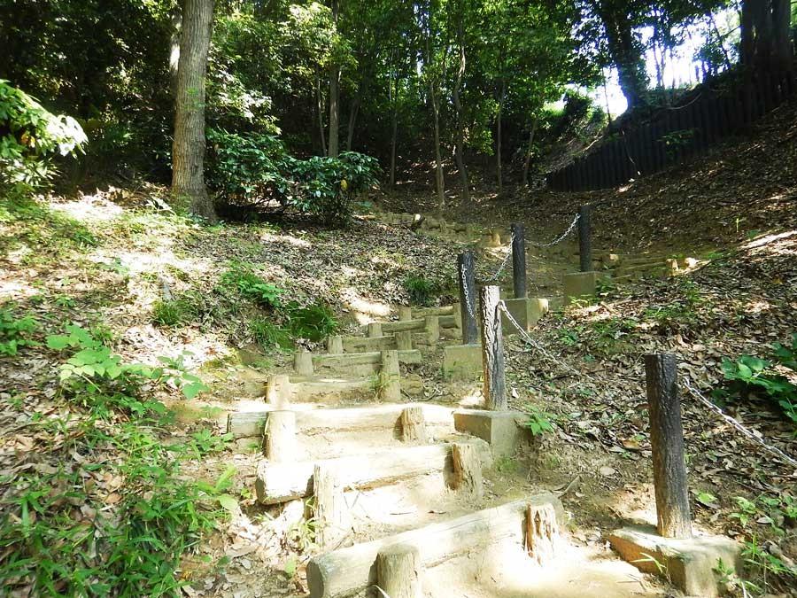 フカフカの道が続き足の負担も少ないが稲城市民の散歩道ということもあり整備されており木段が多い