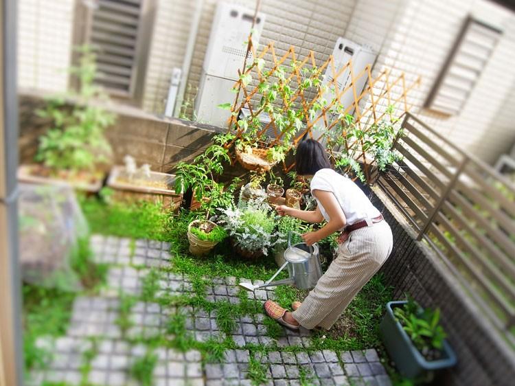 毎日植物の手入れは欠かさないという原口さん。ちいさな空間ながらも、彼女らしい世界観が広がる