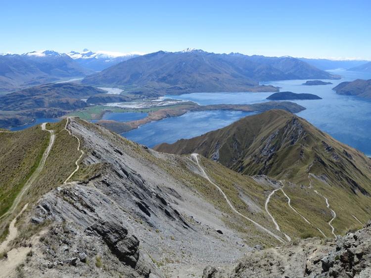 勤めていた会社を辞め、植物を学ぶため単身でニュージーランドへ留学したという原口さん。向こうで過ごした1年間は、手つかずの自然に囲まれアウトドア三昧の日々だったとか