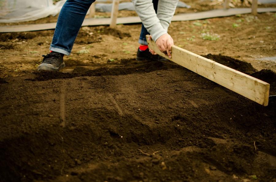 土全体に肥料が行き渡ったら、表面の凹凸がなくなるように整え、