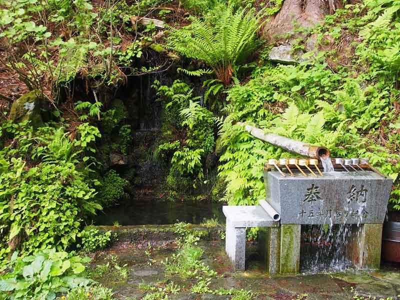 自然の水でお手水