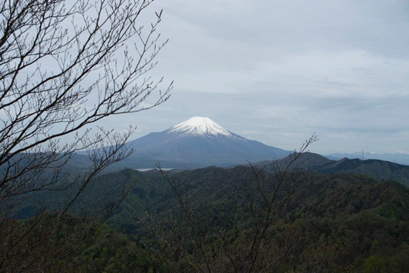 ひたすら西に向かう稜線歩きでは、時々富士山が顔を覗かせる。