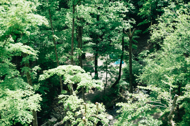 小屋から約60mほど下った清流沿いには、木立のなかに広がるテン場も。
