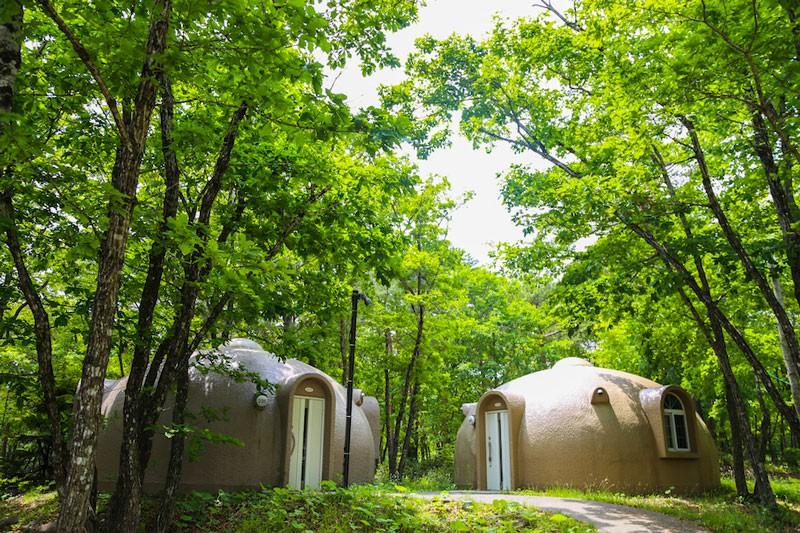 レジーナの森の特徴の1つ、ドームコテージ「オルサ」