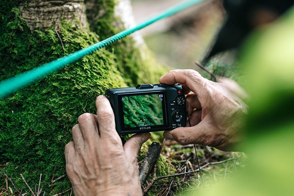苔の観察にはルーペやマクロ撮影が可能なデジタルカメラがあるといい