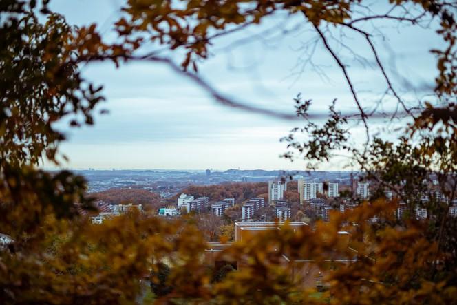 裏山から。晴れた日にはスカイツリーまで見えるという