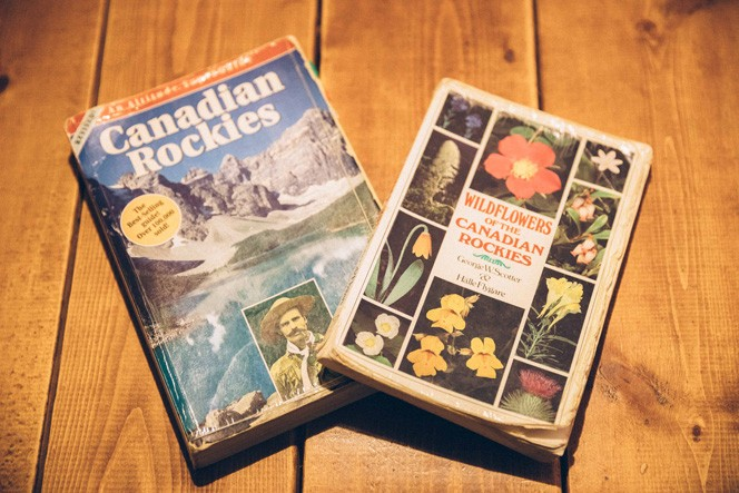 ガイドのときに勉強したという山や花の書籍。訪ねてみたい方はお話を聞いてみては?