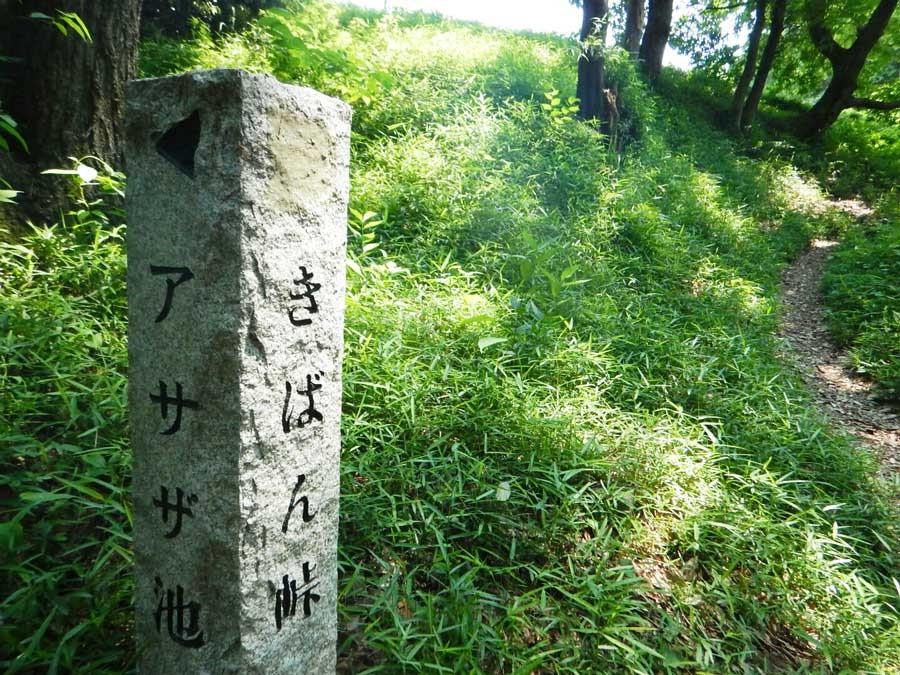 このほかに石畳の道、竹の林など名前がついた道が公園内に存在する