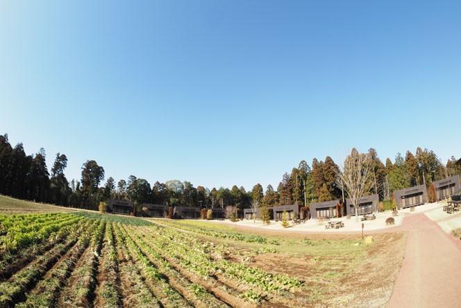 広い農園を眺めながらのコテージはどこか日本ではないようなリゾート地を思わせる
