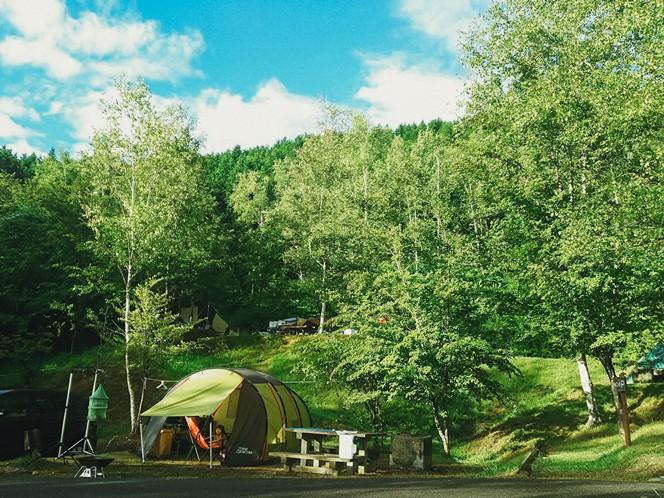 人気のテントサイト・星の森エリア(Bサイト)(提供写真)