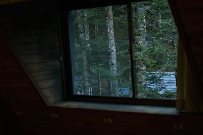 窓越しにみるシラビソの森も素敵だ