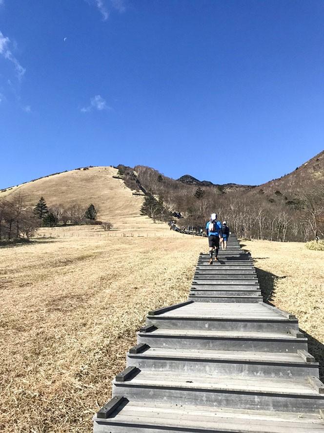 見えている山の一番上まで階段!