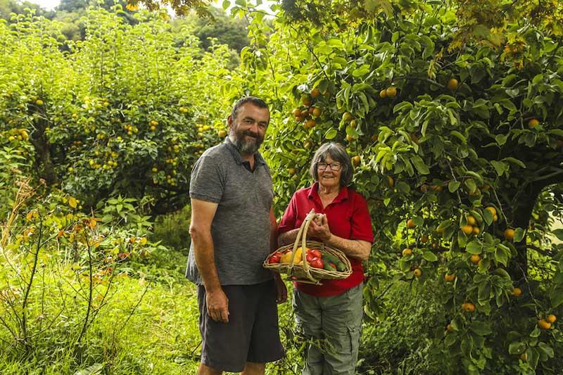 滞在先は、トマトや梨を主に生産するブライアンさんとジェイニーさんご夫妻の農園です。