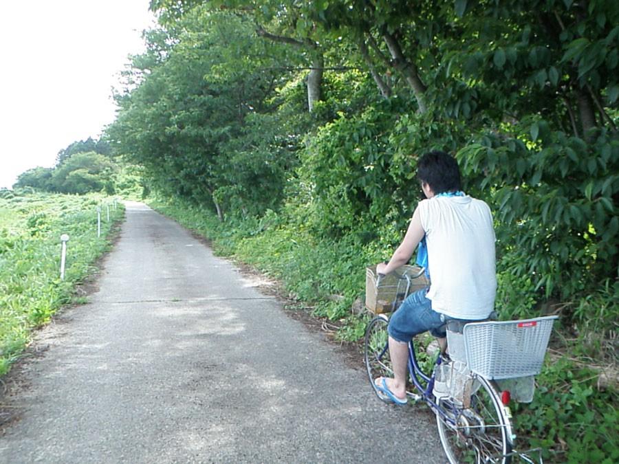 自転車でサイクリングを楽しめる