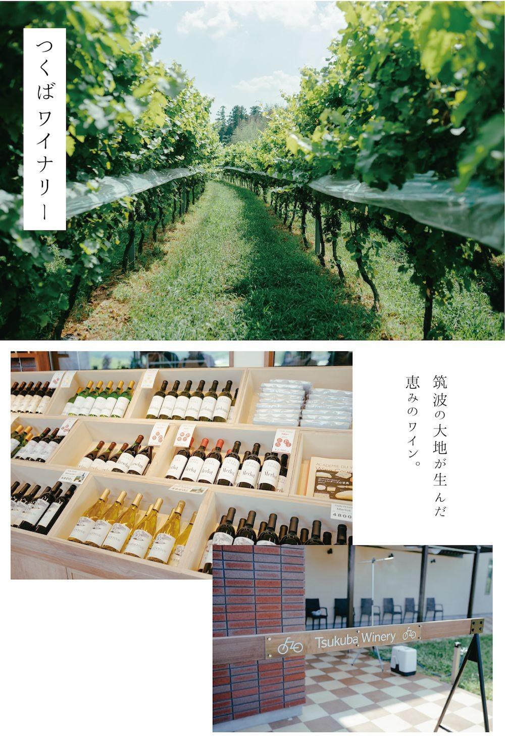 【SPOT】自転車旅で巡りたい、とびきりのごちそうや、よりみちスポット|「美しき、田舎景色を訪ねて。茨城自転車ものがたり。」の2枚目の画像