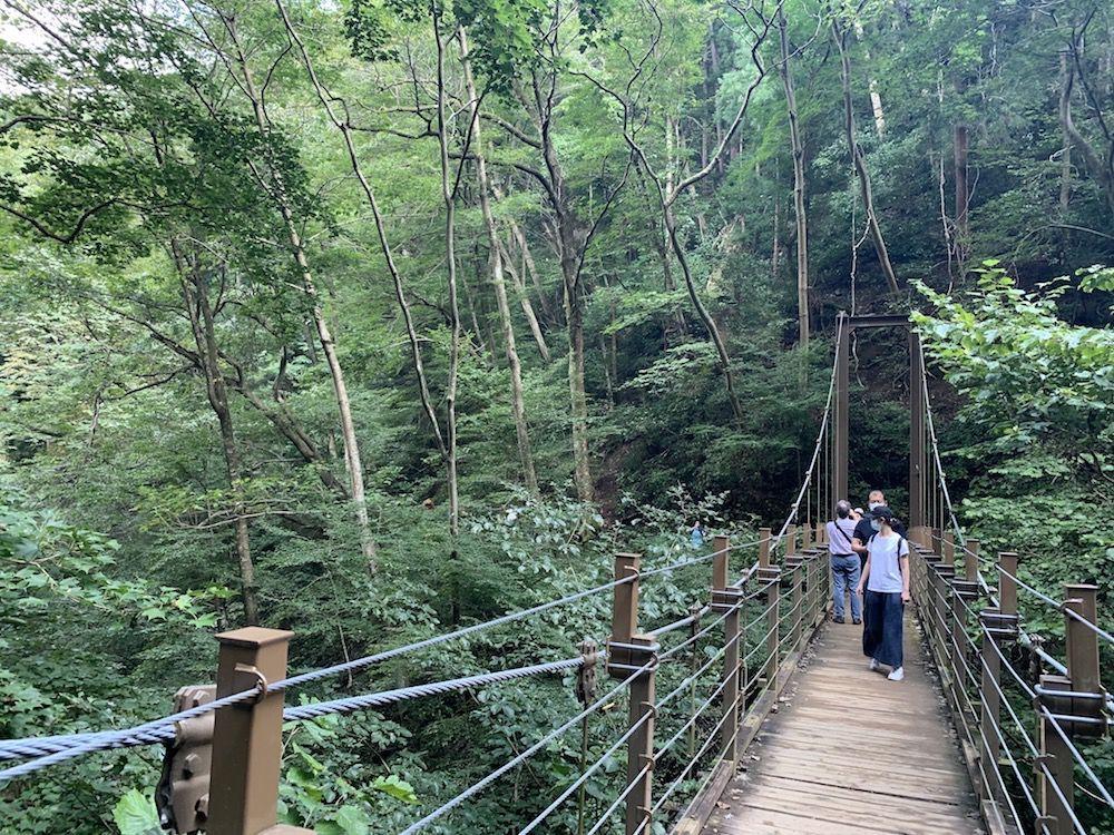 高尾山ー4号路(吊り橋コース)距離:1.5km
