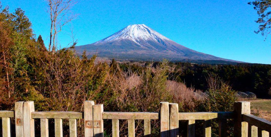 世界遺産にも登録されている日本最高峰の富士山は、季節によってなさまざま表情を見せてくれ、多くの人を魅了しています。今回は、そんな富士山をよりゆったり贅沢に、特別なおいしい体験と共に楽しめる「富士ヶ嶺 おいしいキャンプ場」をご紹介します。富士山好きにはたまらないキャンプ場です!