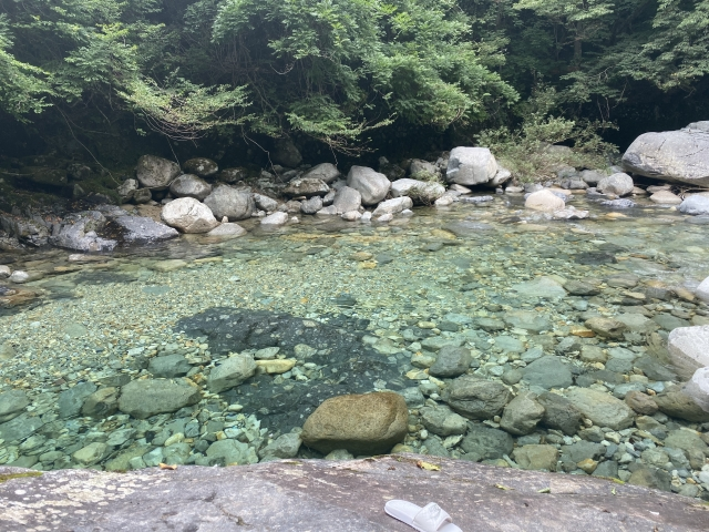 川遊びで涼しい夏を過ごそう!