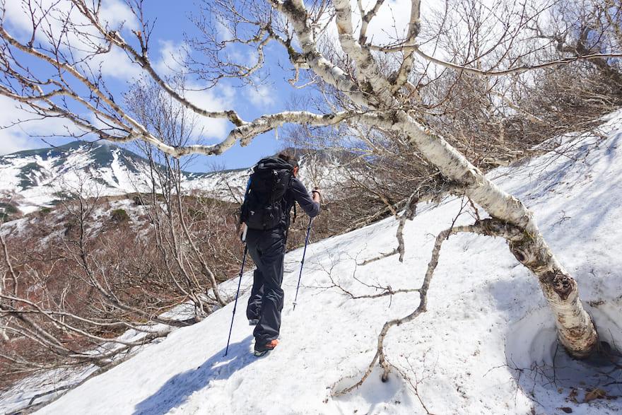 羅臼岳 標識から夏道を進んでいくと気づけば辺り一面雪景色に